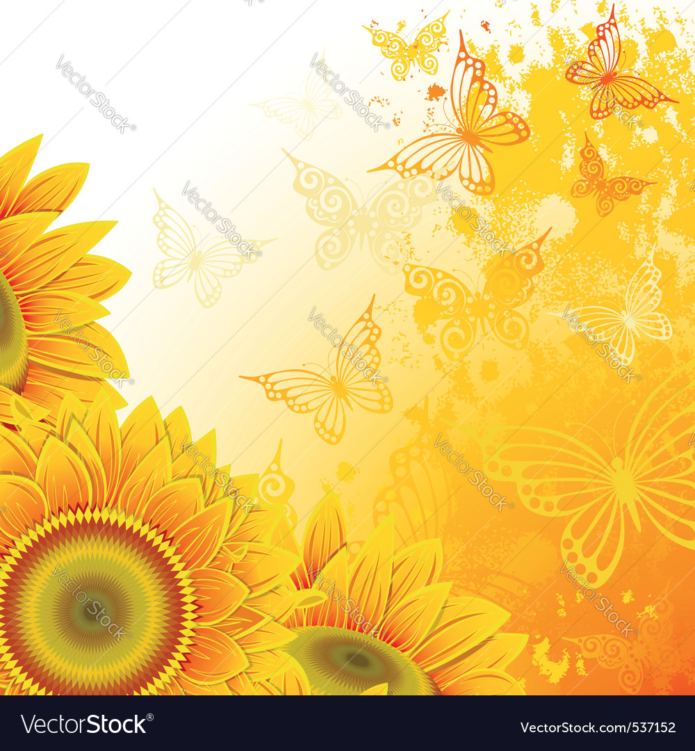 Orange background with sunflowers and butterfliesc vector | Price: 1 Credit (USD $1)
