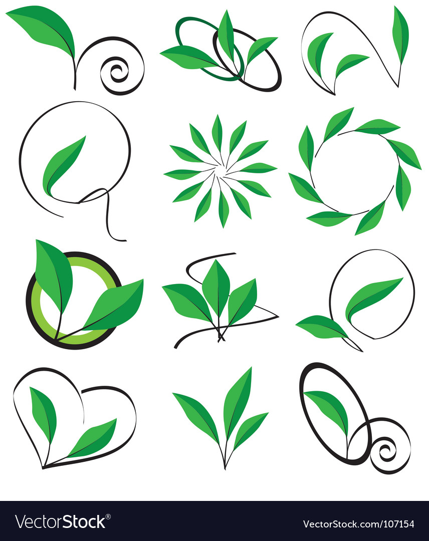 Collection of leaves for design vector | Price: 1 Credit (USD $1)