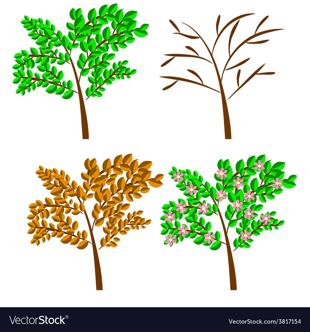 Seasonal trees vector | Price: 1 Credit (USD $1)