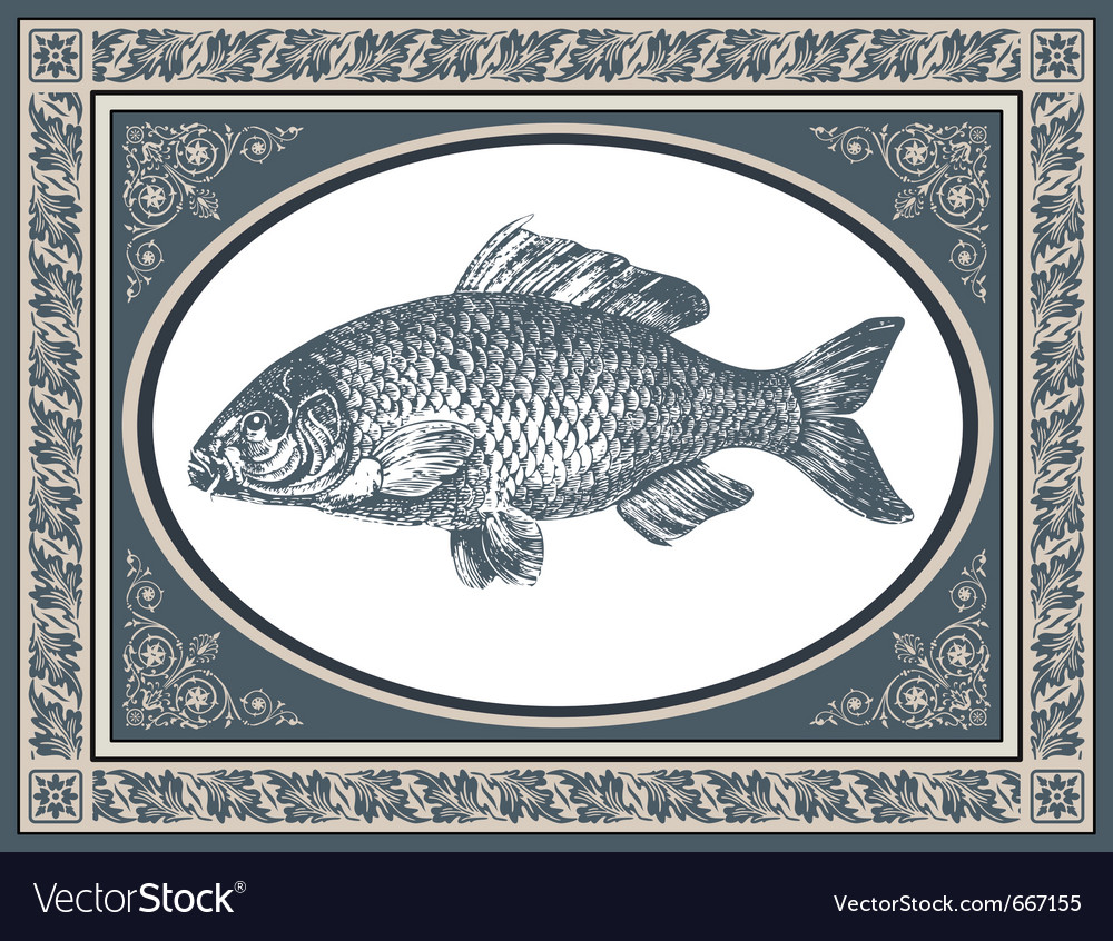 Fish antique vector | Price: 1 Credit (USD $1)