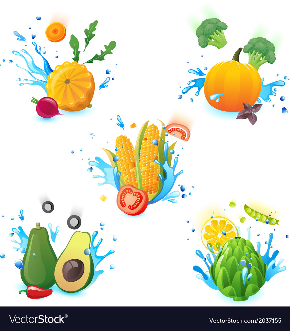 Vegetables in splashes vector | Price: 1 Credit (USD $1)