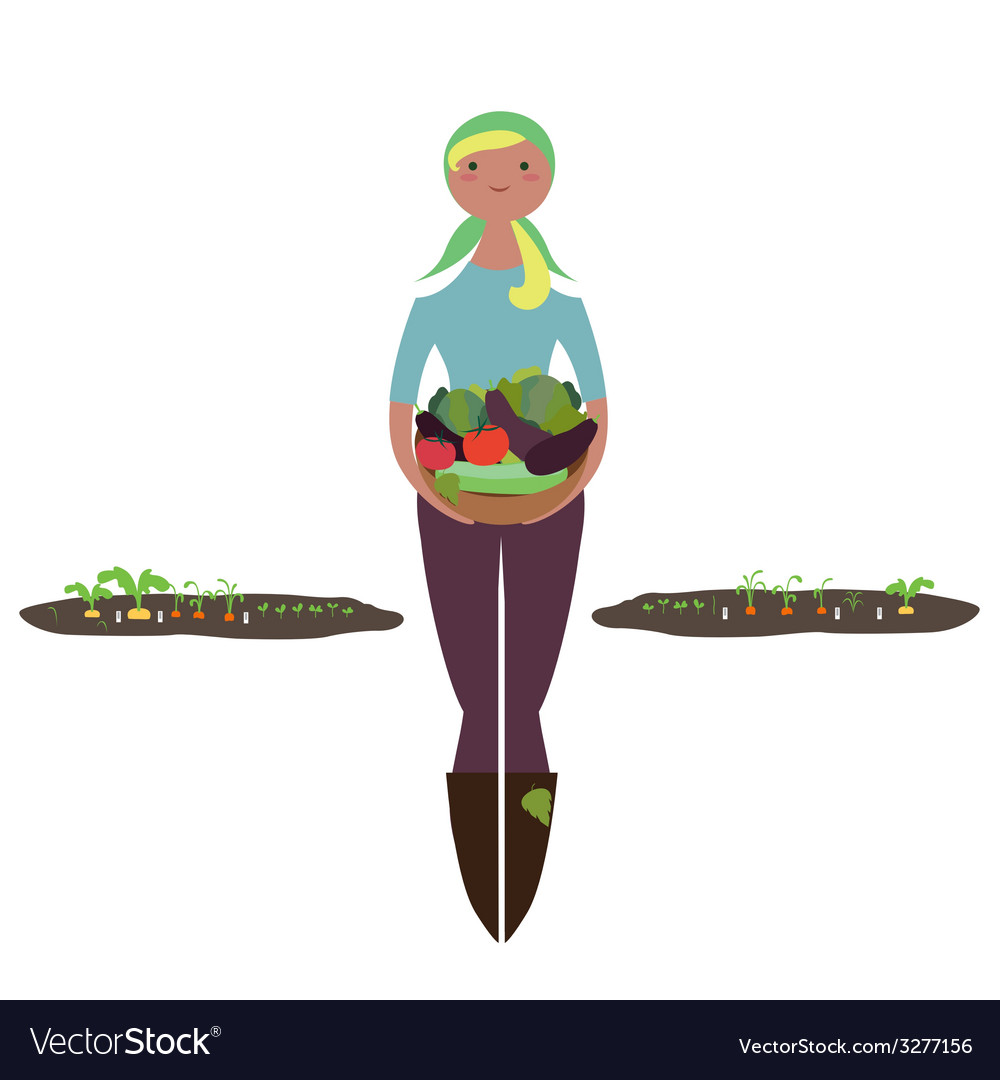Girl with basket of vegetables vector | Price: 1 Credit (USD $1)