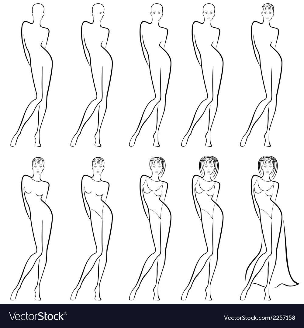 Sequence of creation a beautiful female contour vector | Price: 1 Credit (USD $1)