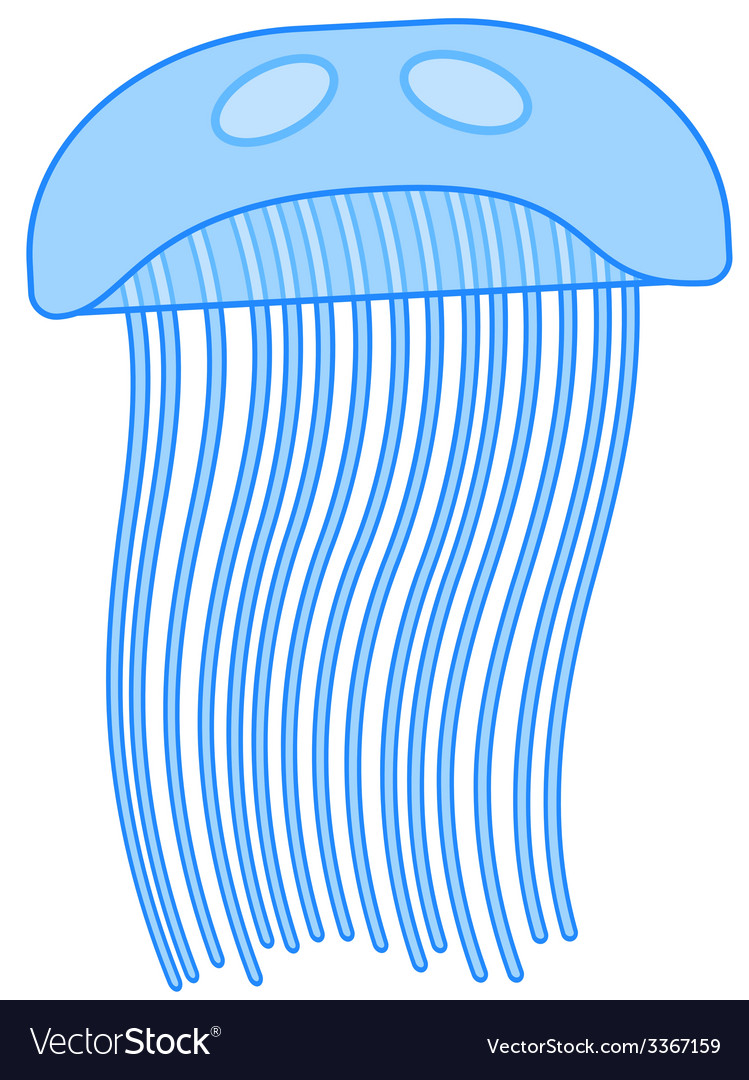 Jellyfish vector | Price: 1 Credit (USD $1)