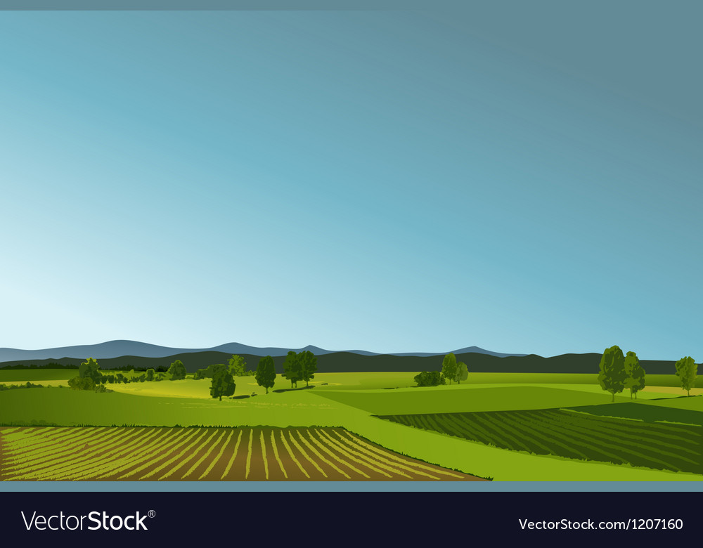 Rural landscape vector | Price: 1 Credit (USD $1)