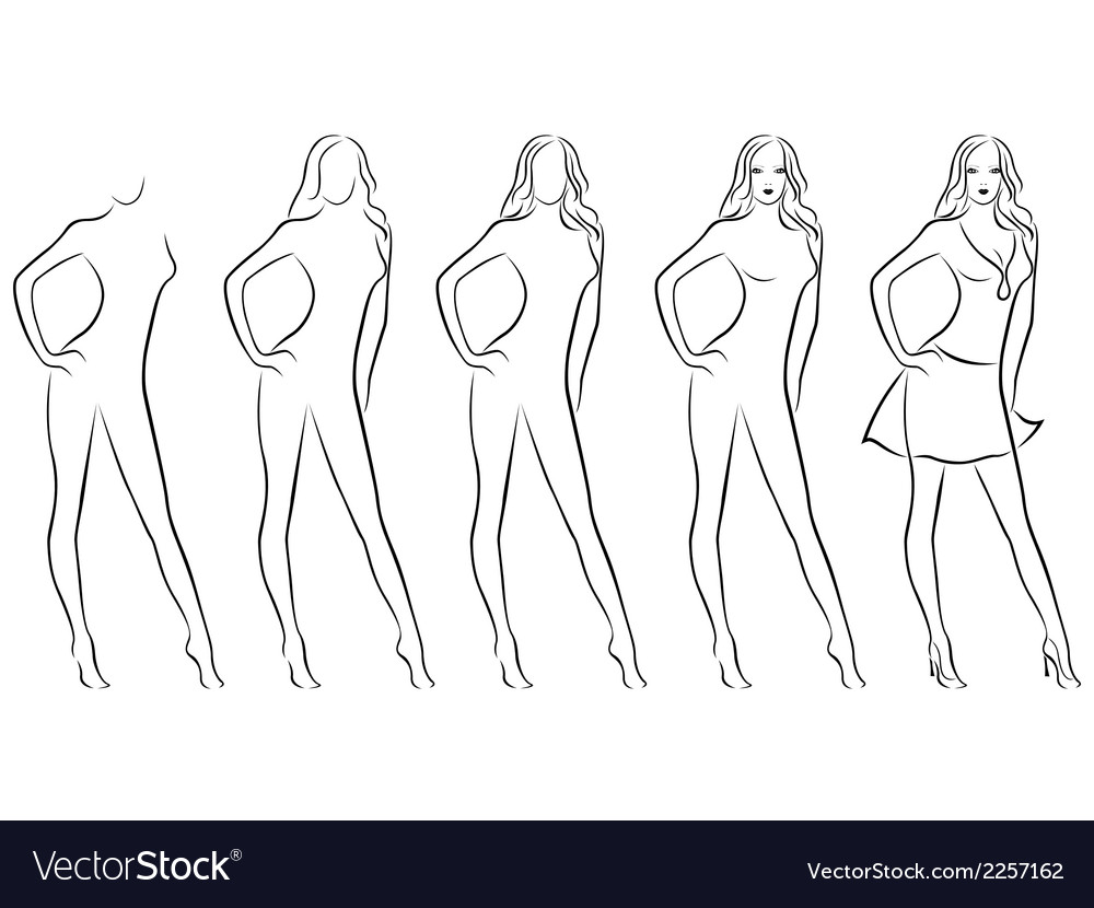 Beautiful female contour in drawing sequence vector | Price: 1 Credit (USD $1)