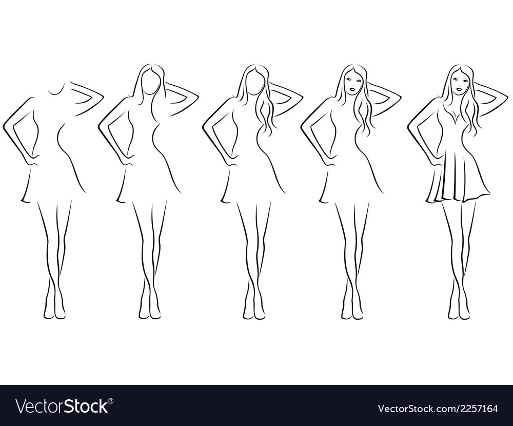 Beautiful young women contour in drawing sequence vector | Price: 1 Credit (USD $1)