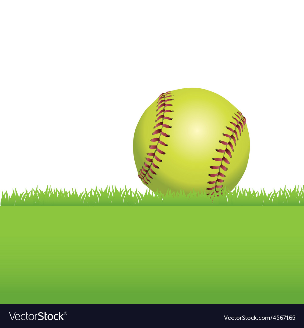 Softball in the grass vector | Price: 1 Credit (USD $1)