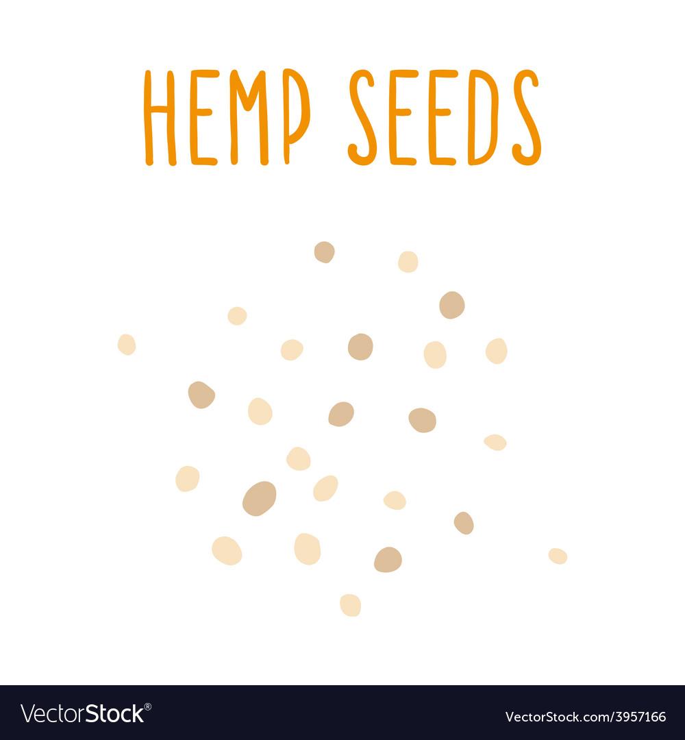 Hemp seeds vector   Price: 1 Credit (USD $1)