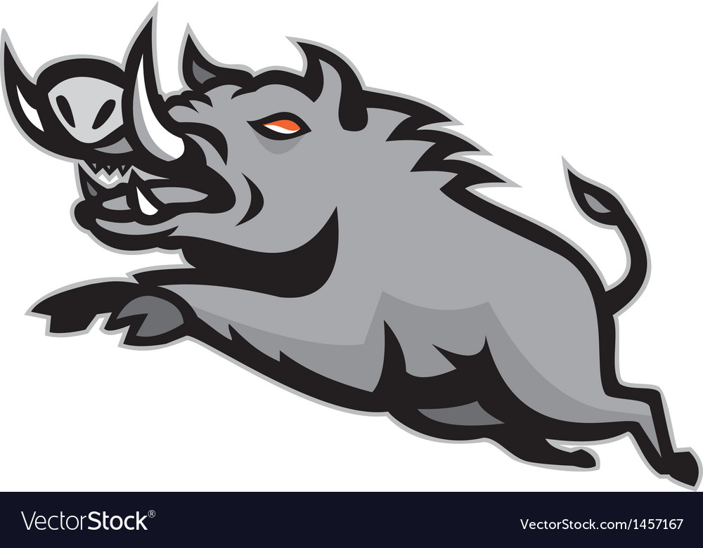 Wild pig boar jumping isolated vector | Price: 1 Credit (USD $1)