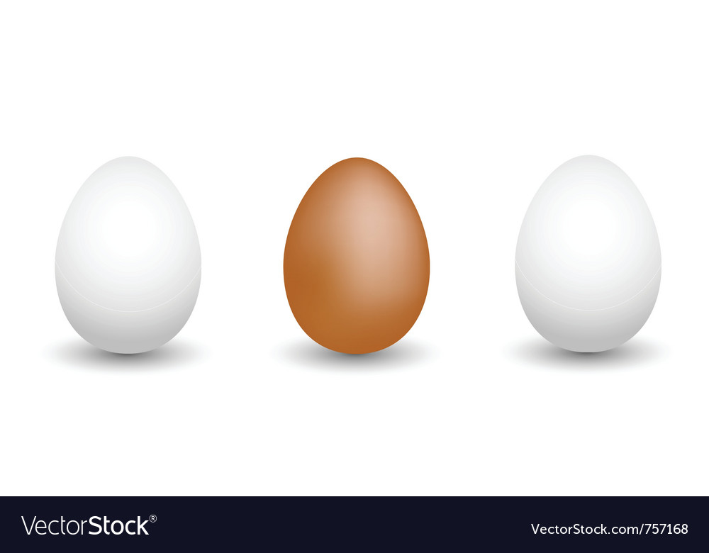 Eggs vector | Price: 1 Credit (USD $1)