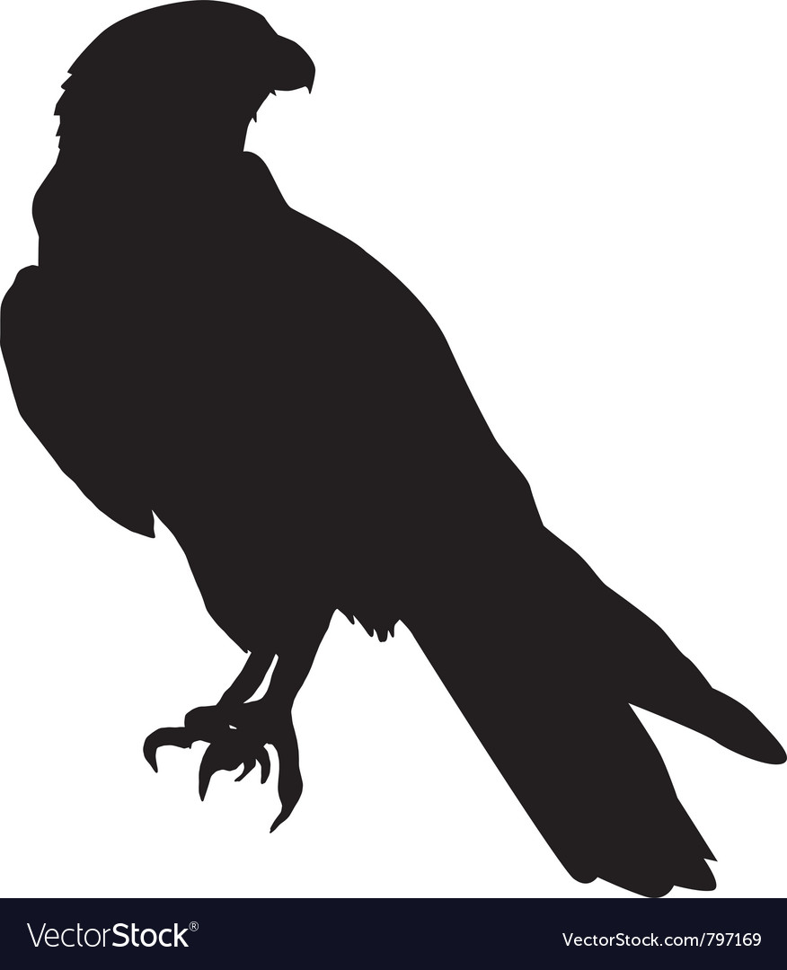Silhouette of falcon vector | Price: 1 Credit (USD $1)