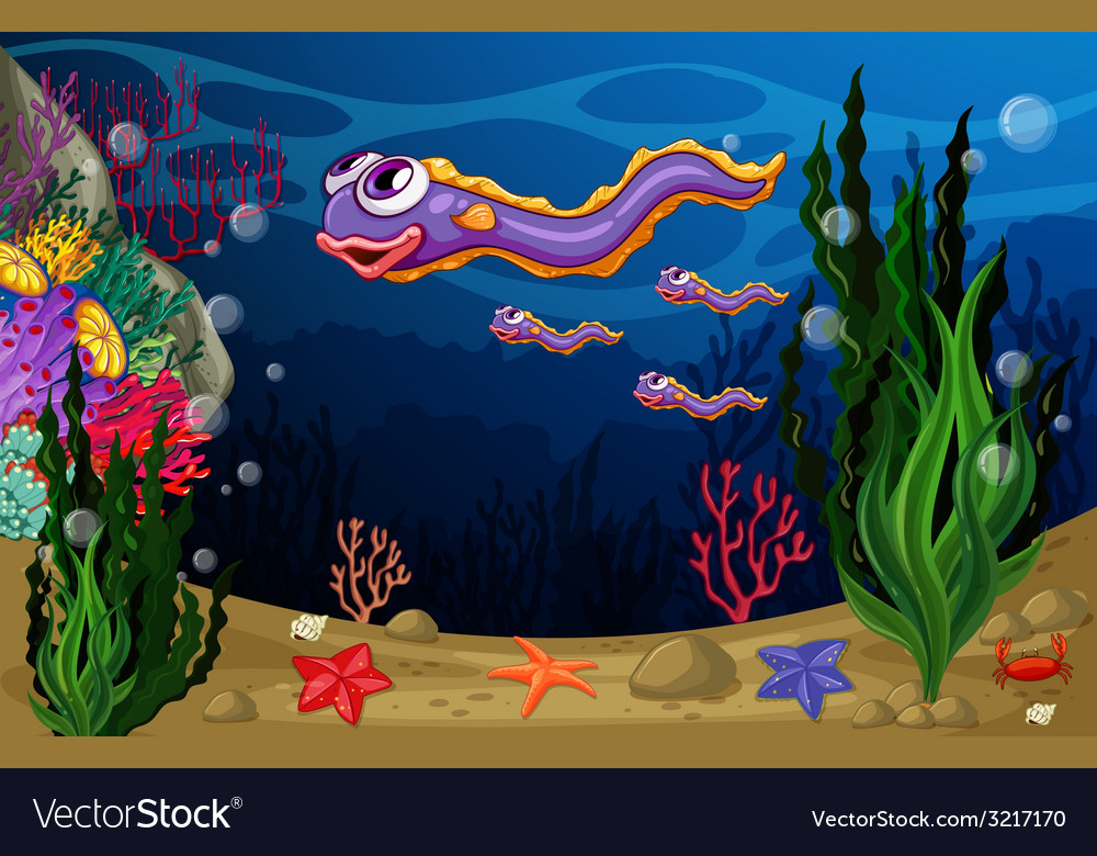 Underwater vector | Price: 3 Credit (USD $3)