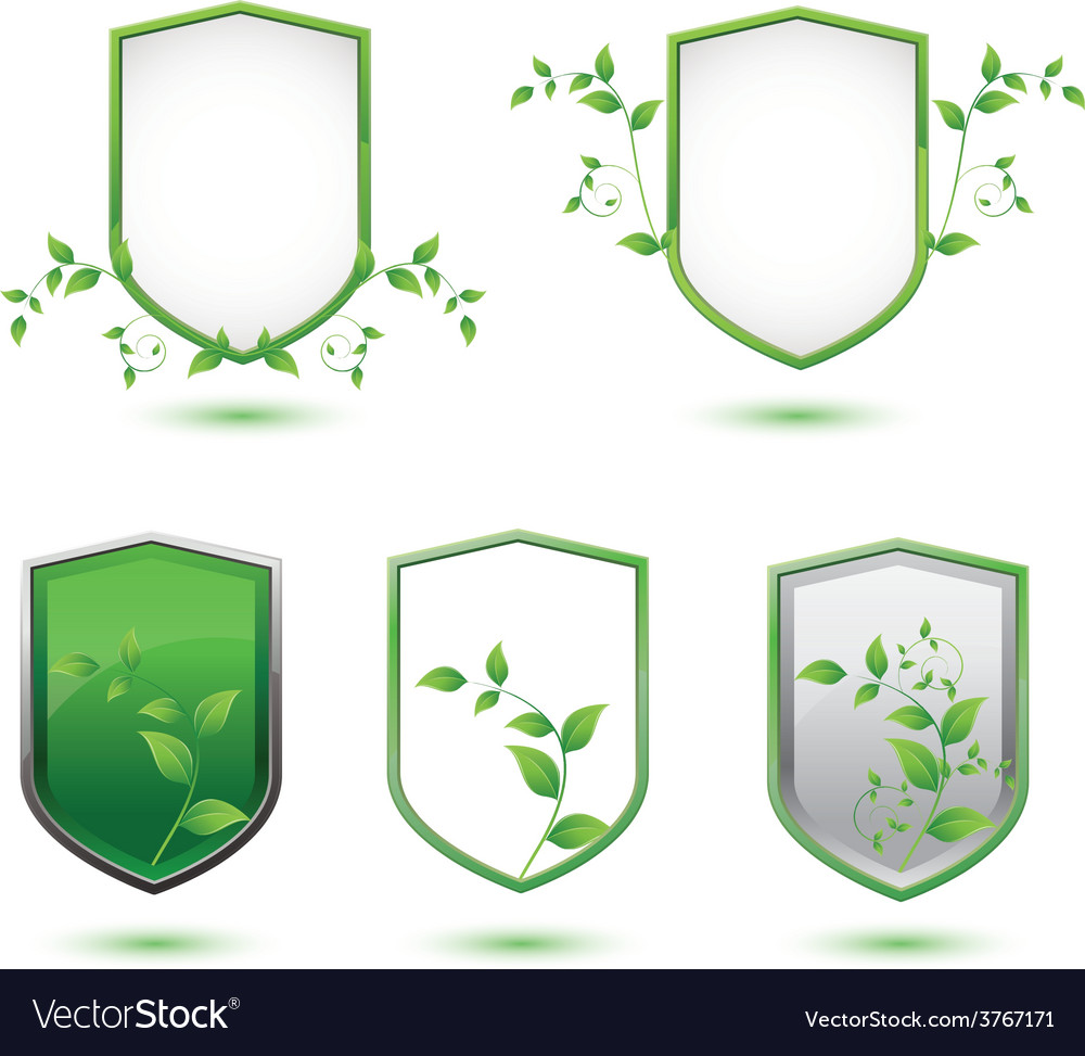 Insulated shield banner with green leaves on a vector | Price: 1 Credit (USD $1)