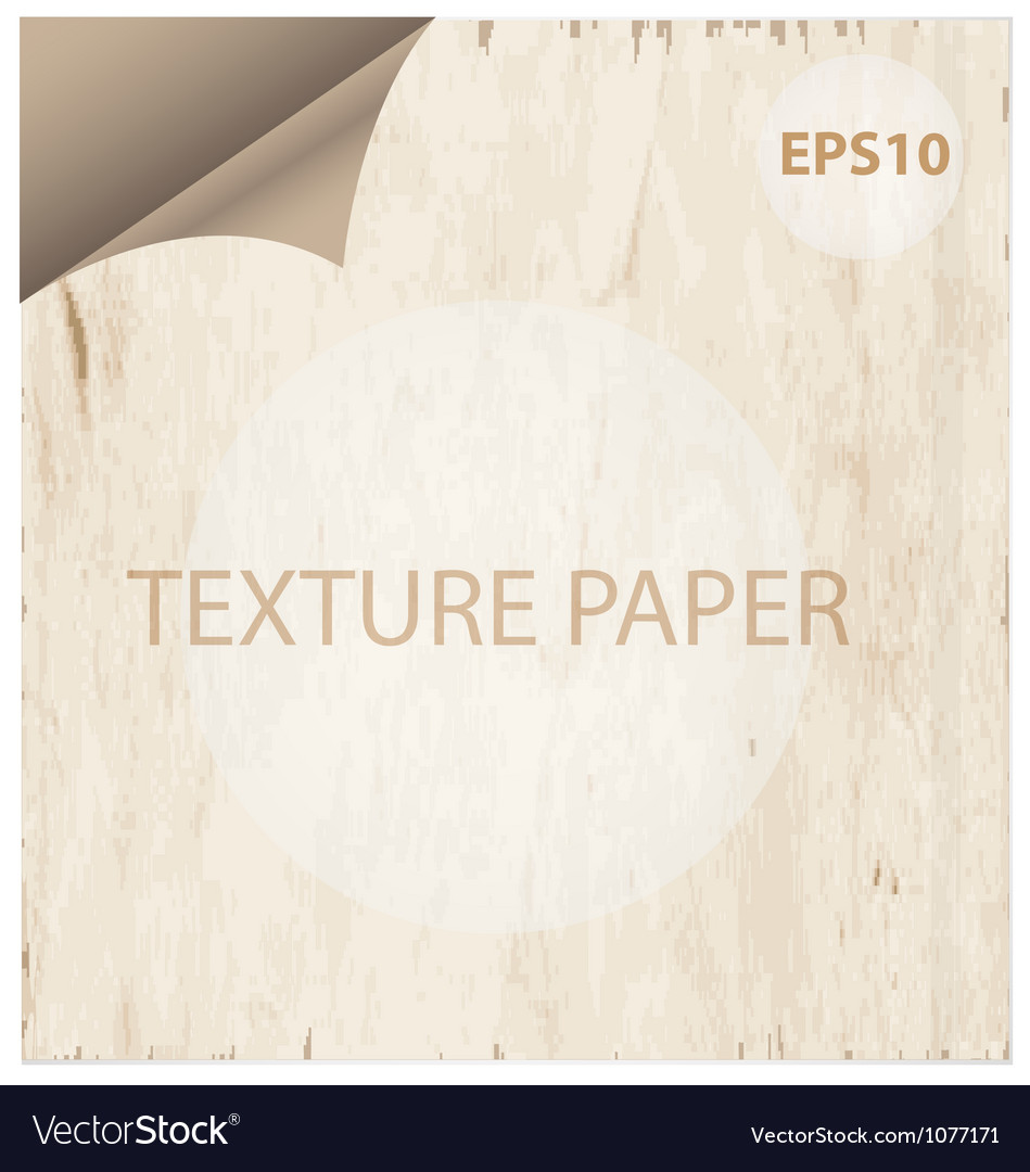 Texture paper curl vitage style background vector | Price: 1 Credit (USD $1)