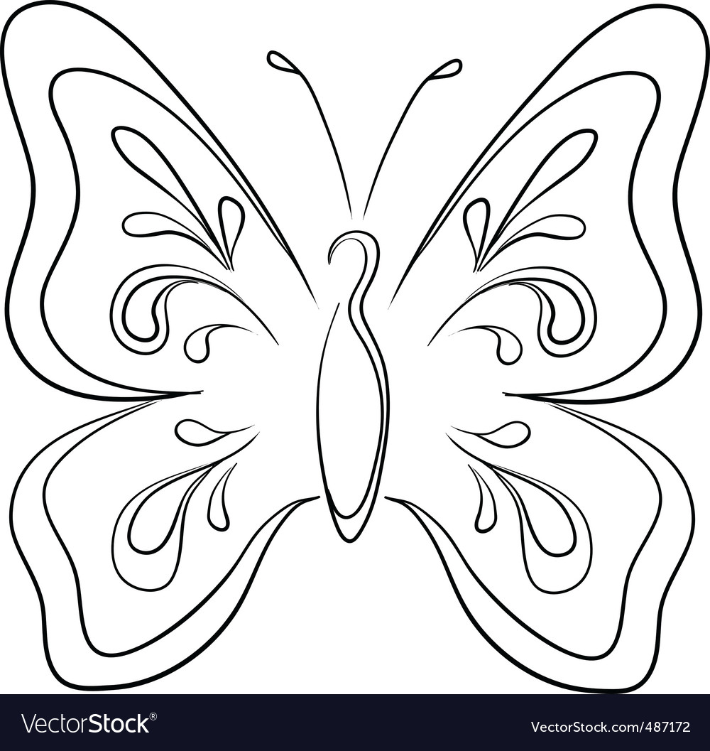 Butterfly contours vector | Price: 1 Credit (USD $1)