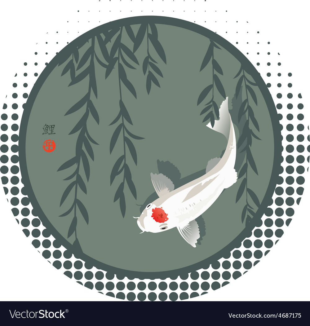 Koi carp and willow branches vector | Price: 1 Credit (USD $1)