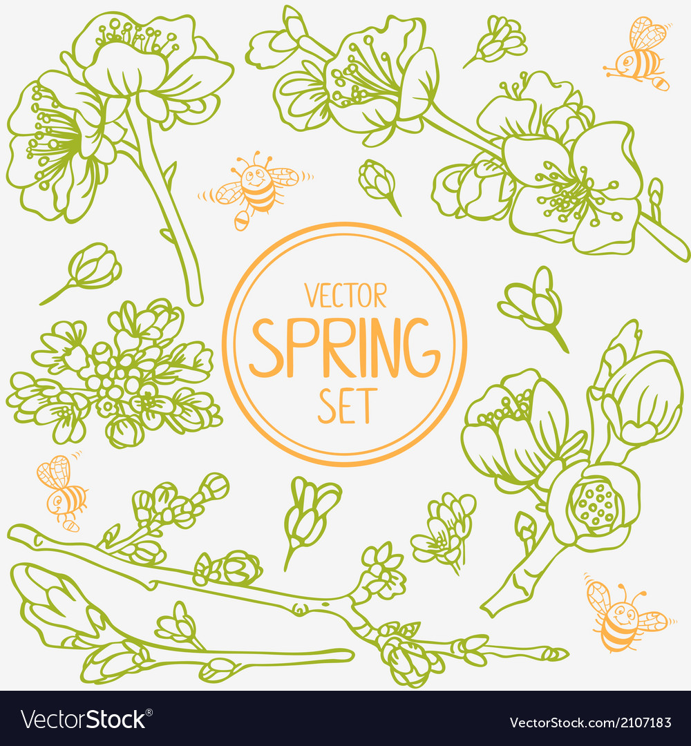 Spring branches set vector | Price: 1 Credit (USD $1)