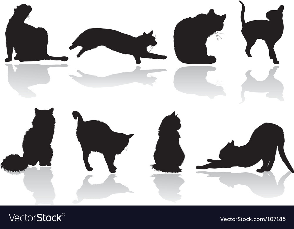 Cat pose vector | Price: 1 Credit (USD $1)