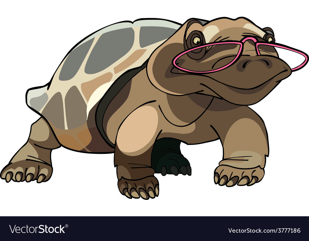 Brown tortoise with glasses vector | Price: 3 Credit (USD $3)