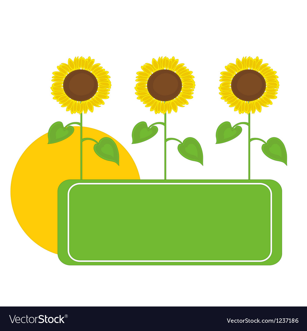Sunflowers frame vector | Price: 1 Credit (USD $1)