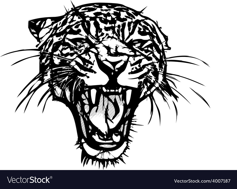 Panther vector | Price: 3 Credit (USD $3)