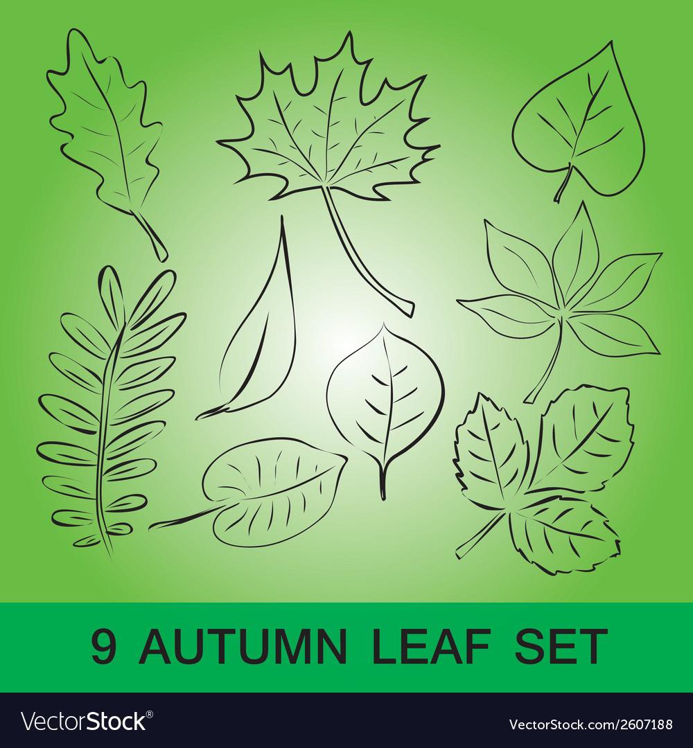 Simple leaf set eps10 vector | Price: 1 Credit (USD $1)