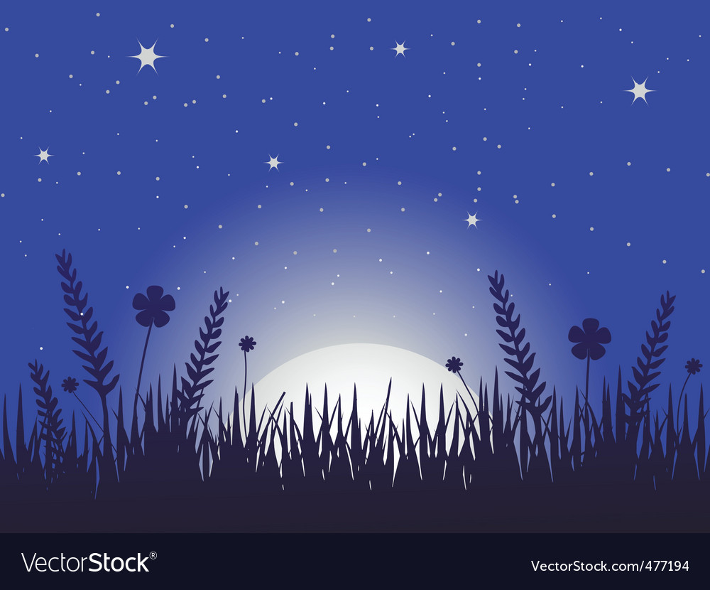 Poppy meadow at night vector | Price: 1 Credit (USD $1)
