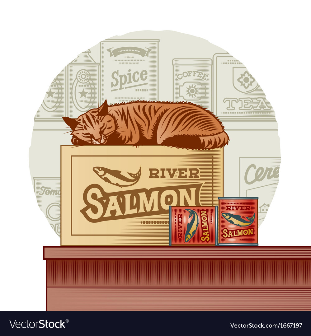 Retro canned fish and sleeping cat vector