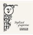 Grapevine vintage graceful angular monogram vector