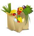 Eco shopping vector