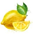 Lemon logo design template fruit or food vector