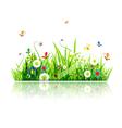 Summer green meadow vector