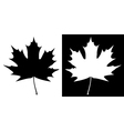 Double maple leaf silhouette vector