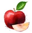 Red apple logo design template fruit or vector
