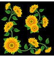 Yellow sunflowers on the black background design e vector