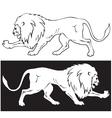 Lion3 vector