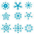 Shapes of snowflakes vector