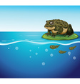 Frog and tadpoles vector