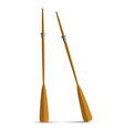 Two wooden oars vector