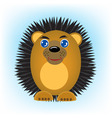 Cartoon animal hedgehog on turn blue background vector