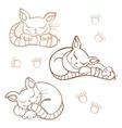 Sleeping cats vector