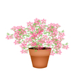 A lovely pink flowering plants in flower pot vector