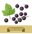 Set of various stylized black currants vector