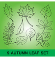 Simple leaf set eps10 vector