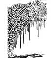 Leopard abstract painting on a white background vector