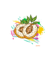 Peaches with colorful splashes vector