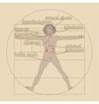 Endocrine system on the vitruvian man vector