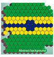 Hexagon in brazil flag concept vector