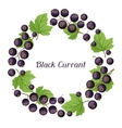 Nature background design with black currants vector